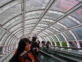 tunel de vidrio_1.jpg